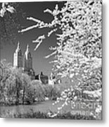 Central Park - Nyc Metal Print