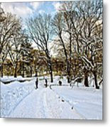 Central Park Snow Storm One Day Later2 Metal Print