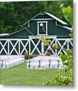 Ceremony In The Vines Metal Print