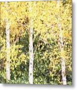 Cezanne Style Digital Painting Beautiful Autumn Color In Forest Metal Print