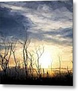 Cezanne Style Digital Painting Stark Bush Silhouette Against Stunning Sunset Sky Metal Print