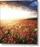 Cezanne Style Digital Painting Stunning Poppy Field Landscape Under Summer Sunset Sky Metal Print