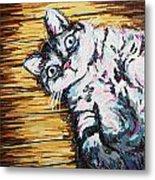 Chachi Cat Portrait Metal Print