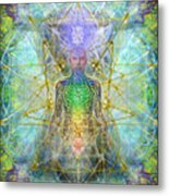 Chakra Tree Anatomy With Mercaba In Chalice Garden Metal Print