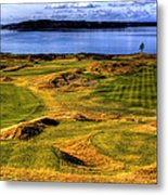 Chambers Bay Lone Tree Metal Print by David Patterson