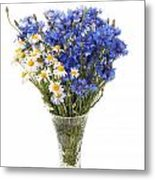 White Camomile And Blue Cornflower In Glass Vase  Metal Print
