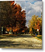 Changing To Fall Colors In Dwight Il Metal Print