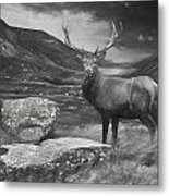 Charcoal Drawing Image Red Deer Stag In Moody Dramatic Mountain Sunset Landscape Metal Print