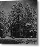 Charcoal Snowfall Metal Print