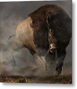 Charging Bison Metal Print by Daniel Eskridge