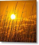 Charleston Beach Sunrise Metal Print