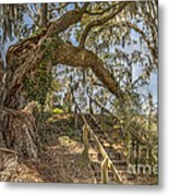 Charleston Oak Stairway Metal Print