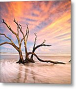 Charleston Sc Sunset Folly Beach Trees - The Calm Metal Print