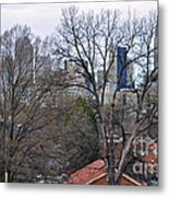 Charlotte In Waiting For Her Blossoms Metal Print
