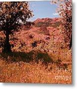 Charons Garden Wilderness Metal Print