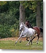 Chasing The Wind Metal Print