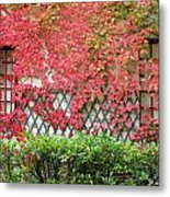 Chateau Chenonceau Vines On Wall Image One Metal Print