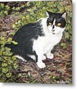 Checkers The Cat Metal Print