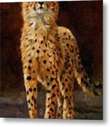 Cheetah Cub Metal Print