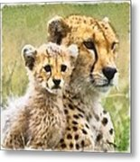 Cheetah Two Metal Print