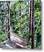Cheraw Trail Metal Print