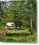 Cherokee Lake Thousand Trails Preserve Metal Print