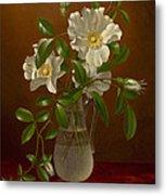 Cherokee Roses In A Glass Vase C1883-1888 Metal Print