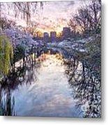 Cherry Blossom Lagoon Metal Print