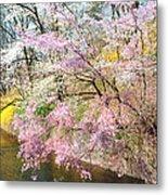 Cherry Blossom Land Metal Print