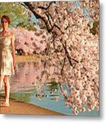 Cherry Blossoms 2013 - 080 Metal Print
