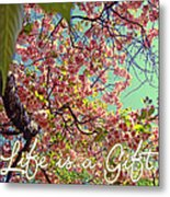 Cherry Blossoms And A Life Quote Metal Print
