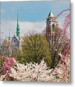 Cherry Blossoms And The Sacred Heart Metal Print