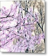 Cherry Blossoms In Spring Snow Metal Print