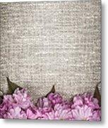 Cherry Blossoms On Linen  Metal Print by Elena Elisseeva
