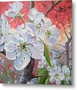 Cherry In Blossom Red Metal Print
