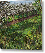 Cherry Orchard Evening Metal Print