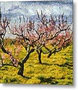 Cherry Trees 3.0 Metal Print