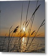 Chesapeak Bay At Sunrise Metal Print