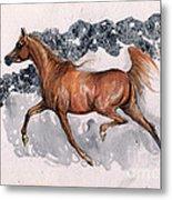 Chestnut Arabian Horse 2014 11 15 Metal Print
