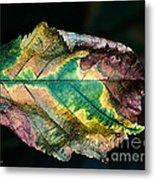Chestnut Autumn Mosaic Metal Print