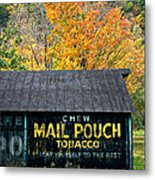 Chew Mail Pouch 2 Metal Print