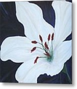 Chicago Snow White Lusterlily Metal Print