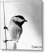 Chick Chick Metal Print by Debbie Sikes
