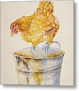 Chicken Feed Metal Print