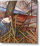 Chicken On Fence  Zinc Arkansas Metal Print