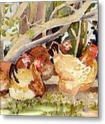 Chickens In The Hedge II Metal Print