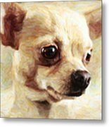 Chihuahua Dog - Painterly Metal Print by Wingsdomain Art and Photography