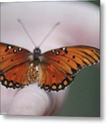 Child And Butterfly - We Shall Renew Again Metal Print