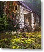 Childhood Dreams Metal Print by Debra and Dave Vanderlaan