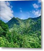 Chimney Tops Mountain In Great Smoky Mountains  Metal Print